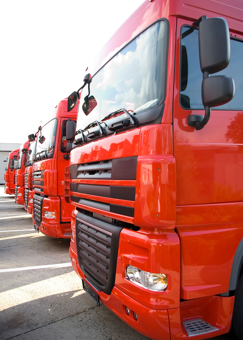 Freight Forwarding Agency